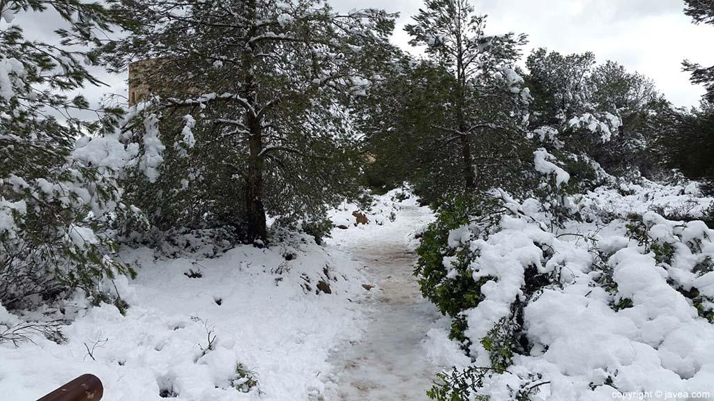 81 Nieve en Xàbia
