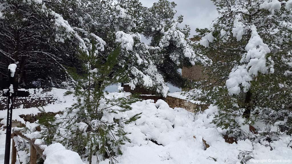 82 Nieve en Xàbia