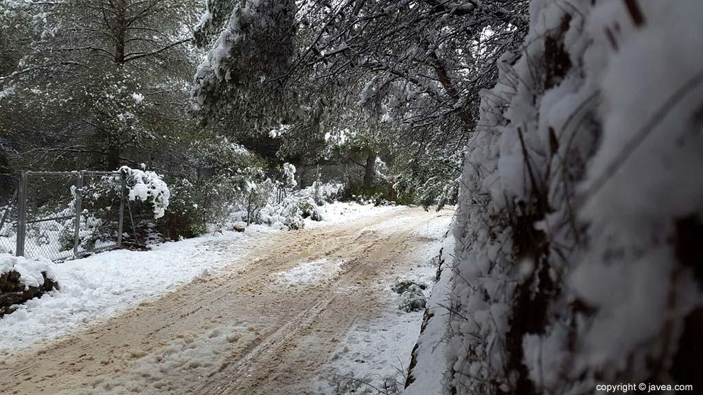85 Nieve en Xàbia