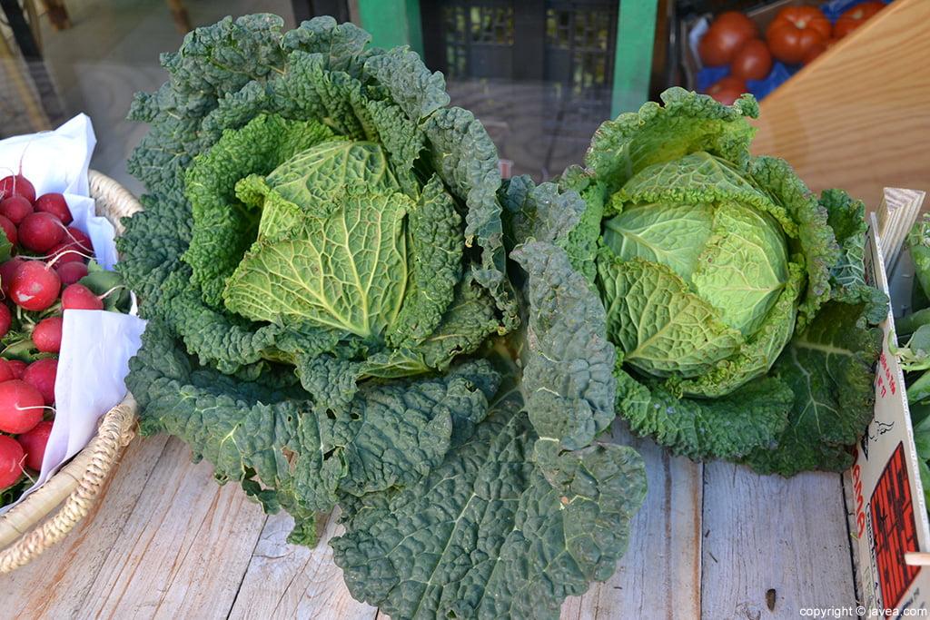 BIO HURTADO verdura