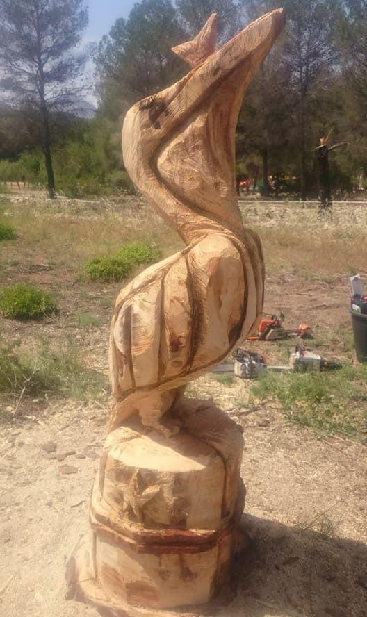 Фигура Пеликана в Пиносоле