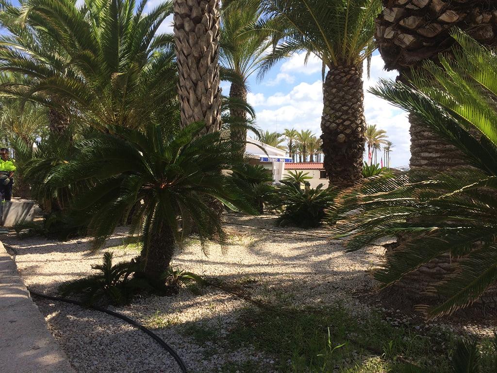 Zona verde situada en un extremo del Paseo del Arenal
