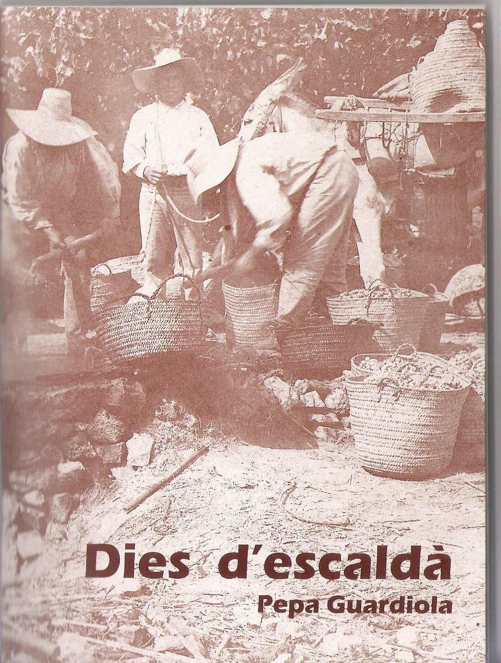 Libro 'Dies d'escaldà'