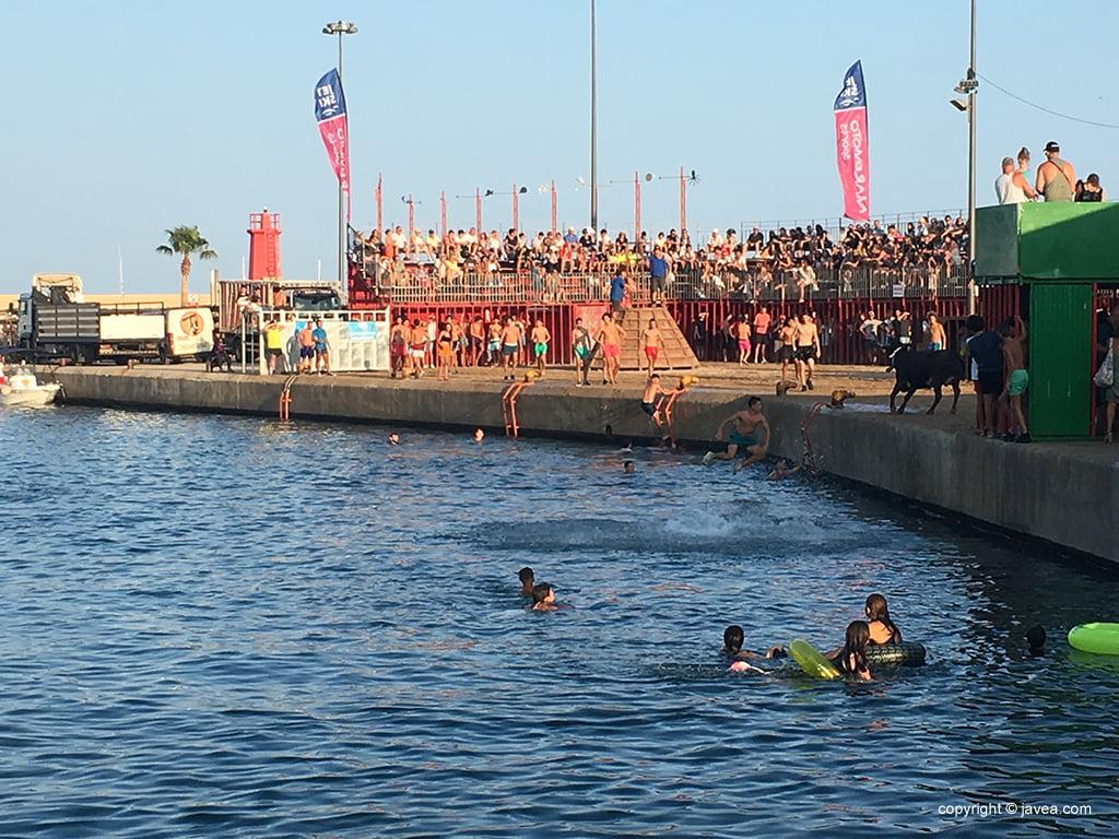 Bous a la Mar Fiestas de Loreto