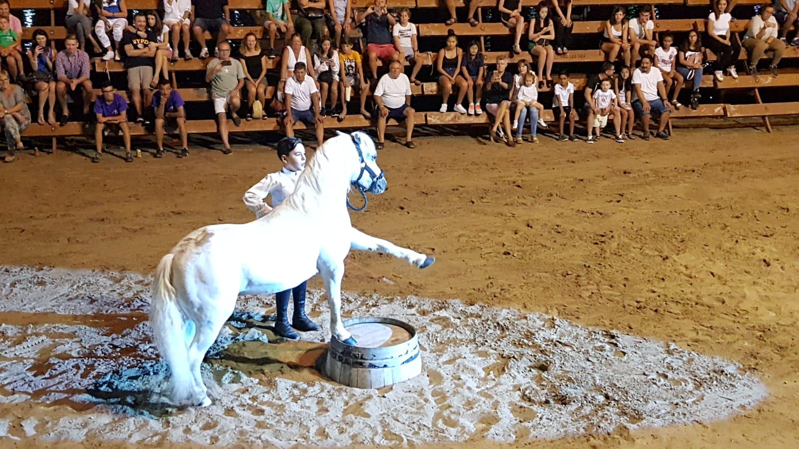 Doma de caballos fiestas del Loreto
