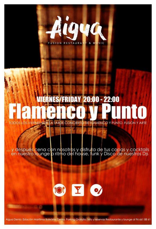 Flamenco y punto en Aigua
