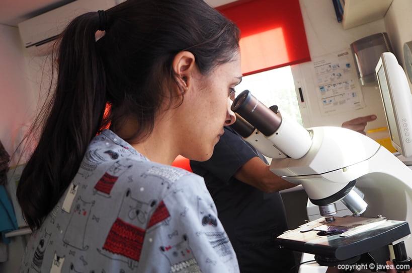 Laboratori Clínica Veterinària ASIS Vets