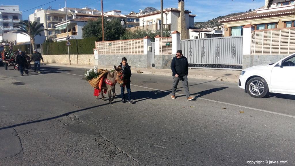 Desfile de San Antón Xàbia