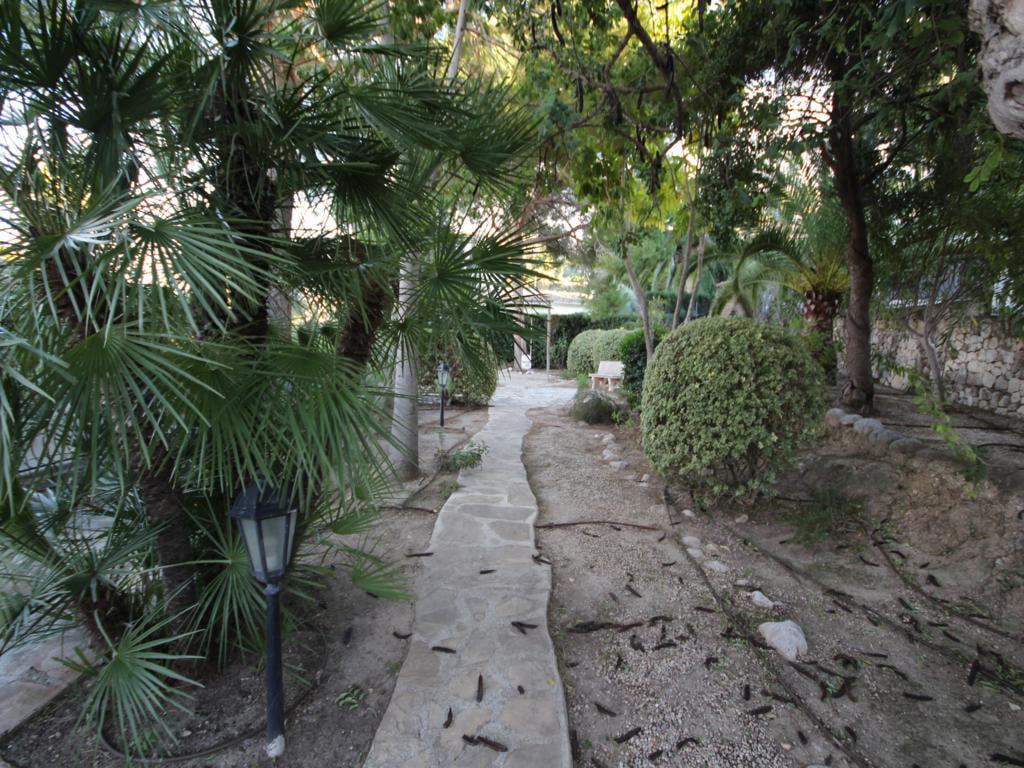 Jardín de la casa Atina Inmobiliaria