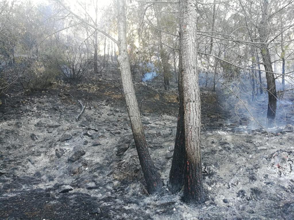 Incendio Rebaldí