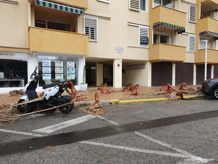 Branches tombées dans la région d'Arenal