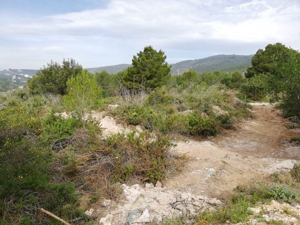 Image: Illegal dumping area that will be transformed into a green area