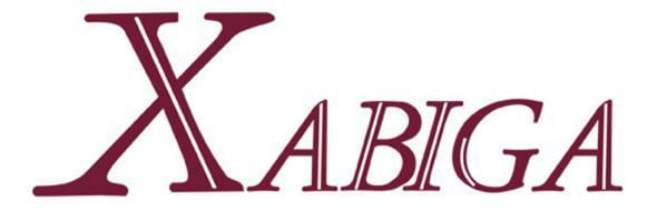 Image: Xabiga Real Estate Logo