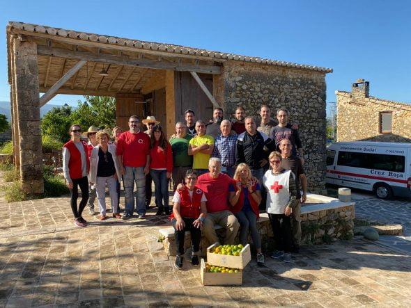 Imatge: Voluntaris en la recollida de taronges