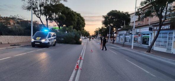 Imagen: Incidente en la Avenida Palmela