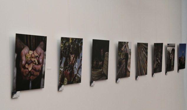 Imatge: Exposició sobre Les Pesqueres al Museu Soler Blasco