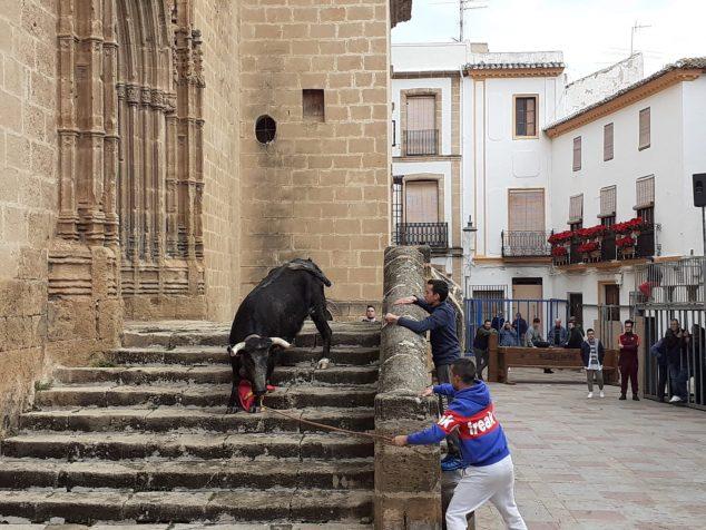 Imagen: Actuación taurina en la Plaza de la Iglesia en las fiestas de Sant Sebastià
