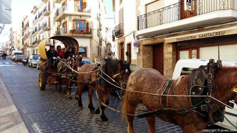 Desfile de caballerías en Sant Antoni