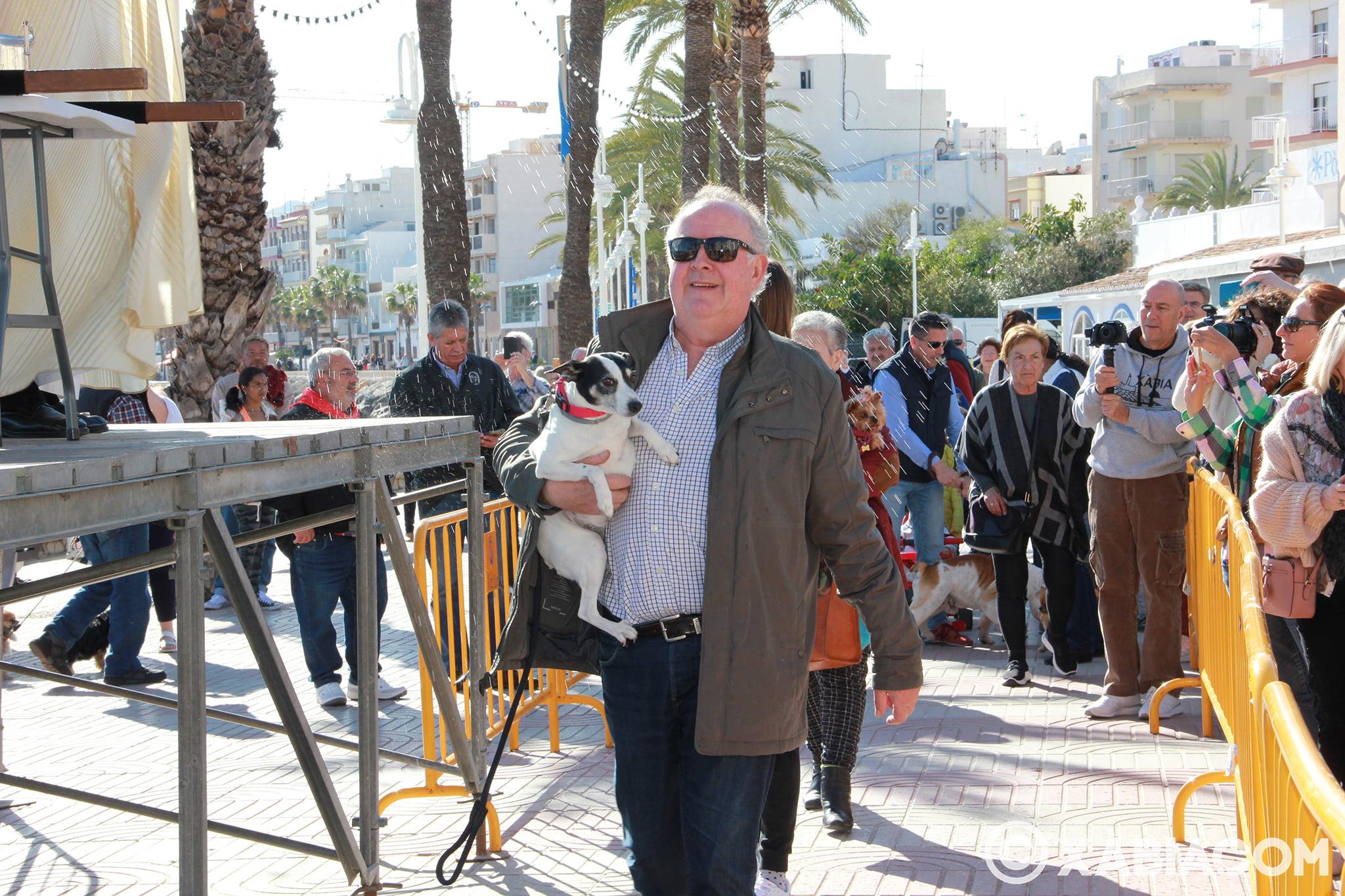 Dia de Sant Antoni. Benedicció d'animals en Duanes de la Mar (11)