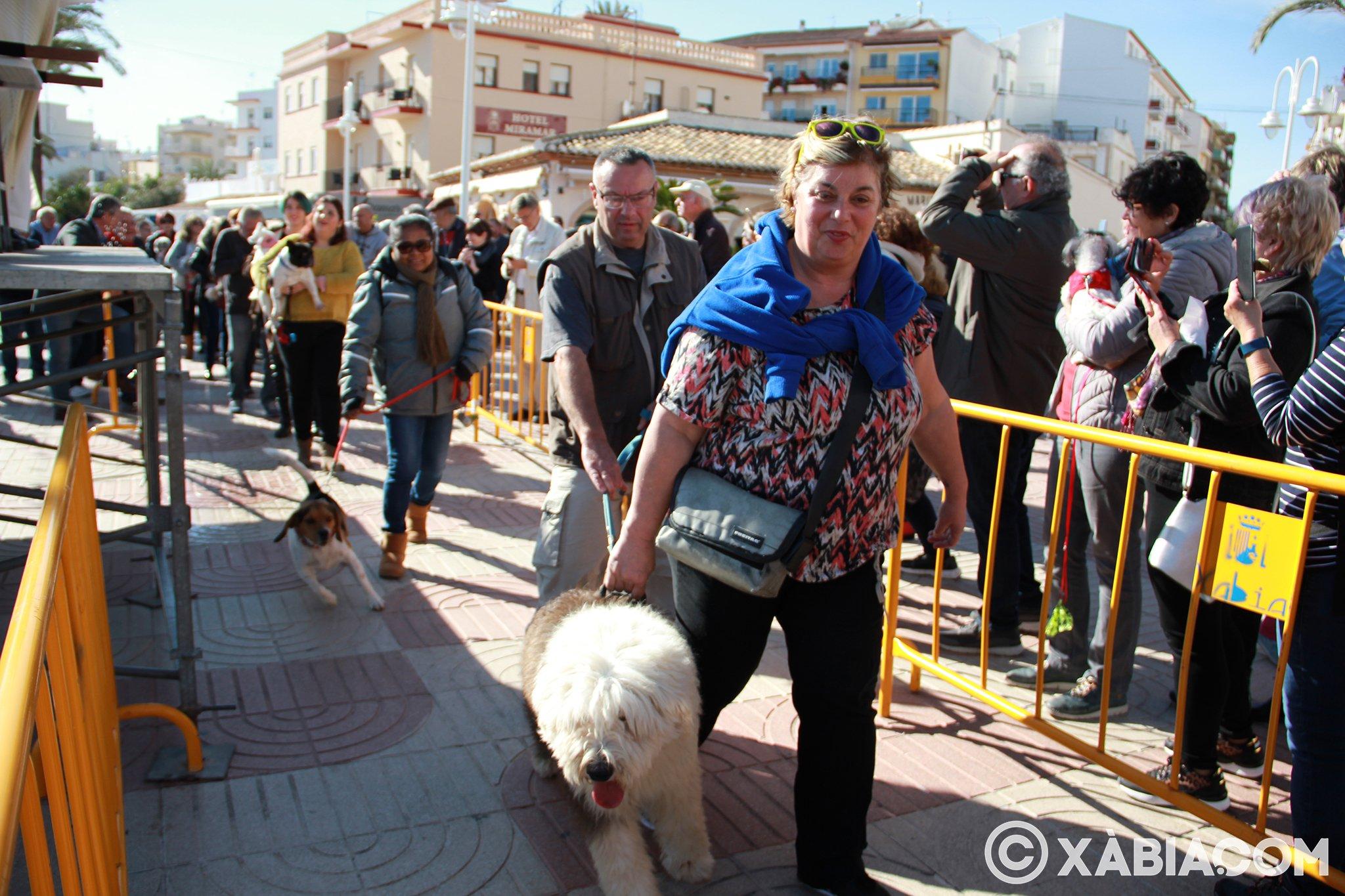 Dia de Sant Antoni. Benedicció d'animals en Duanes de la Mar (17)