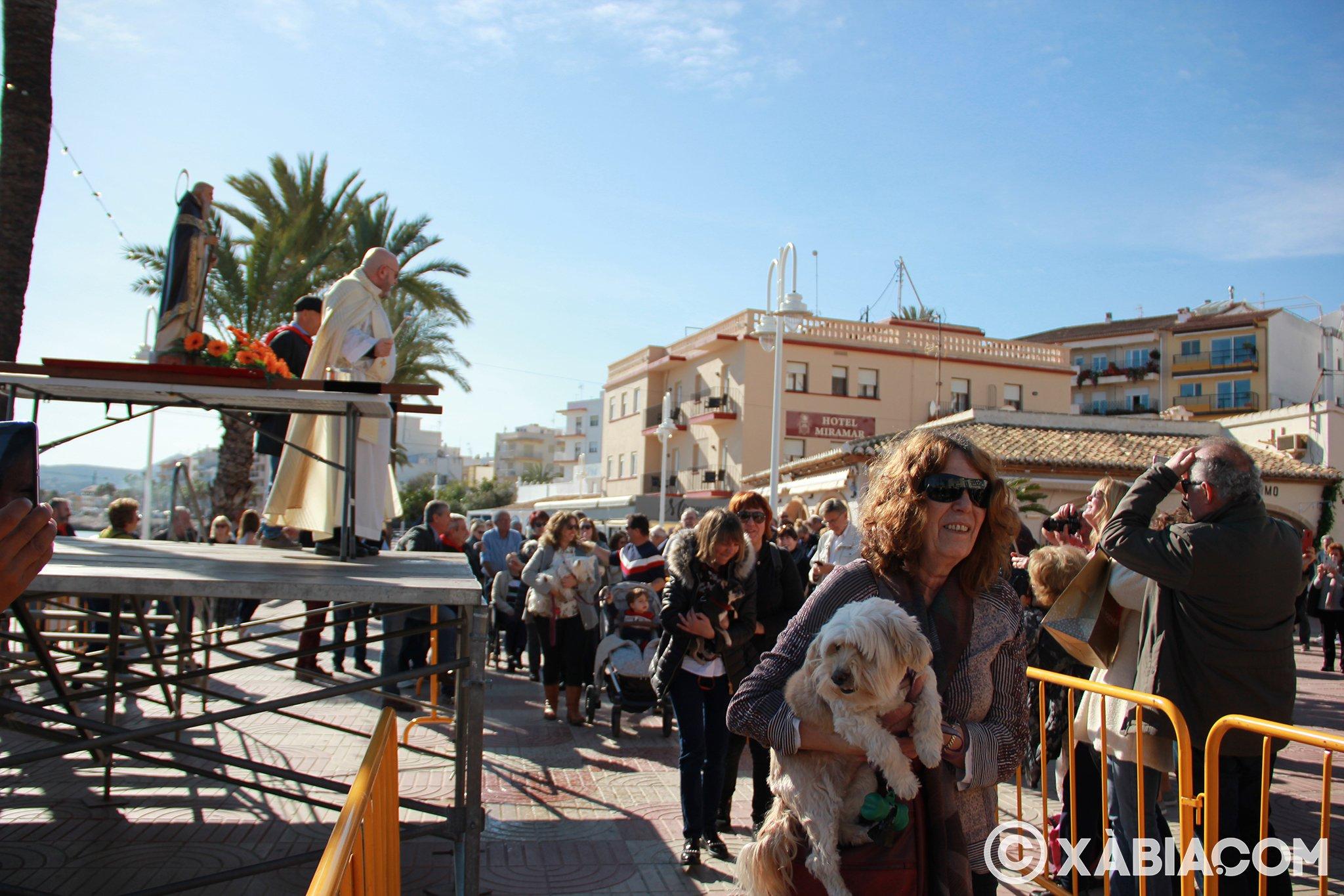 Dia de Sant Antoni. Benedicció d'animals en Duanes de la Mar (19)