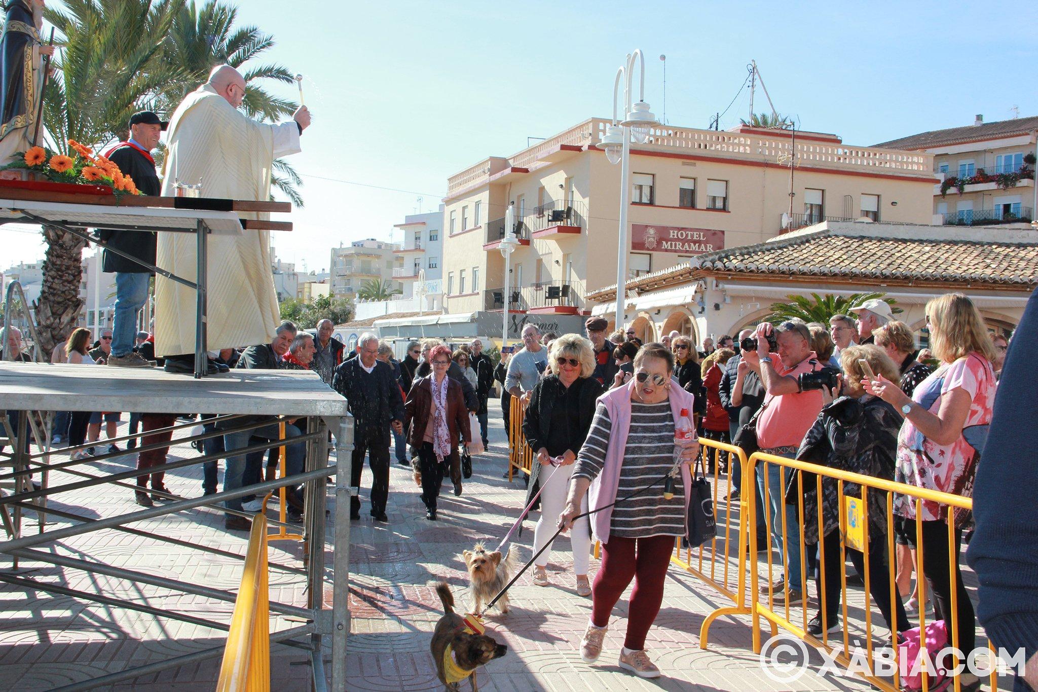 Dia de Sant Antoni. Benedicció d'animals en Duanes de la Mar (24)