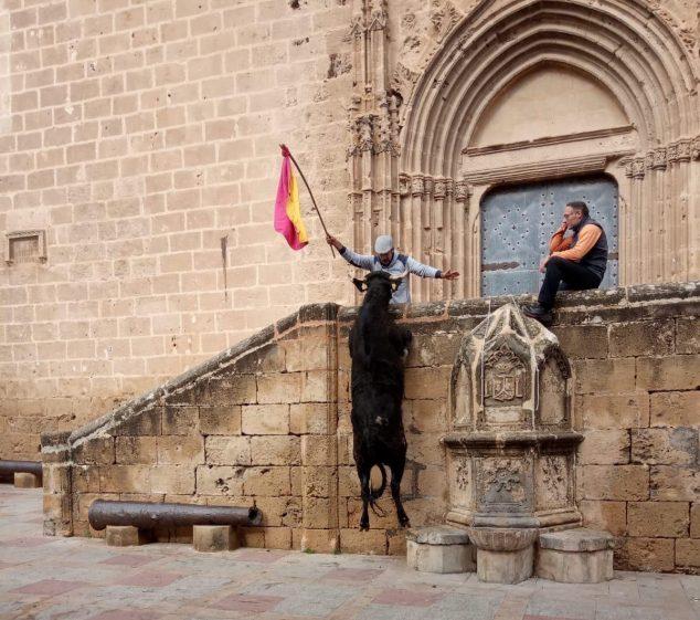 Imagen: El toro salta en una de las actuaciones taurinas