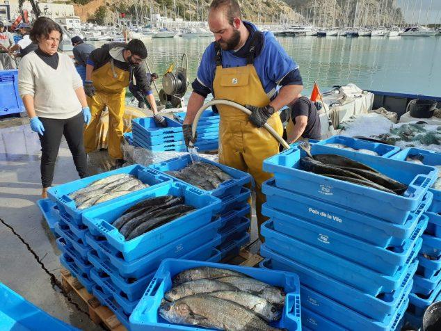Imagen: Pescadores en la llegada a puerto con la captura