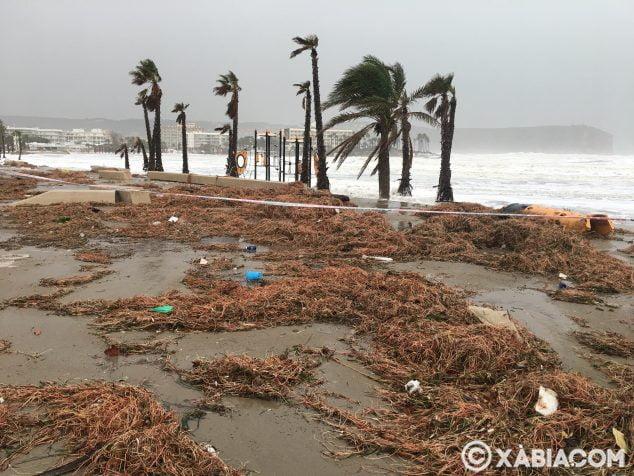 Imagen: Situación del Paseo de la Playa del Arenal
