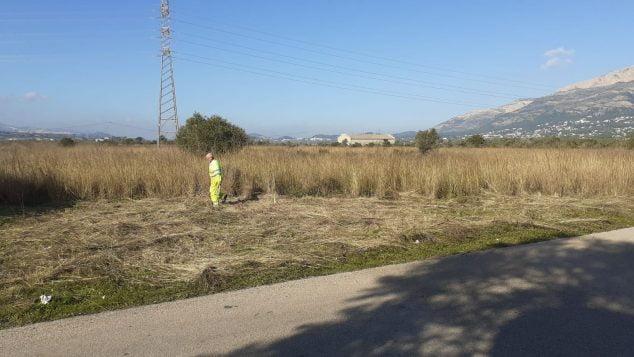 Imagen: Trabajos en la entrada por Gata
