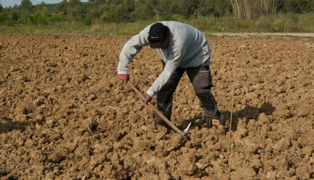 Agricultor trabajando la tierra