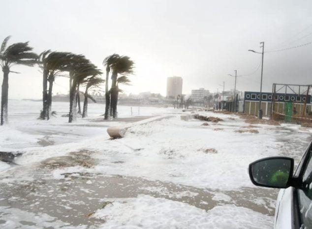 Imagen: Daños del temporal Gloria en el Paseo del Arenal