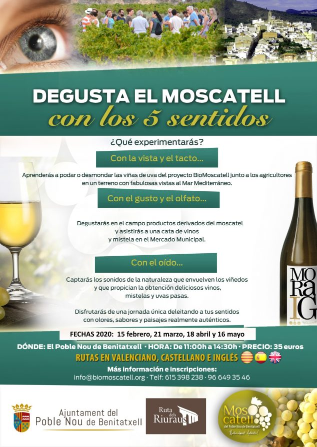 Imagen: Rutas 'Degusta el Moscatell con los 5 sentidos'