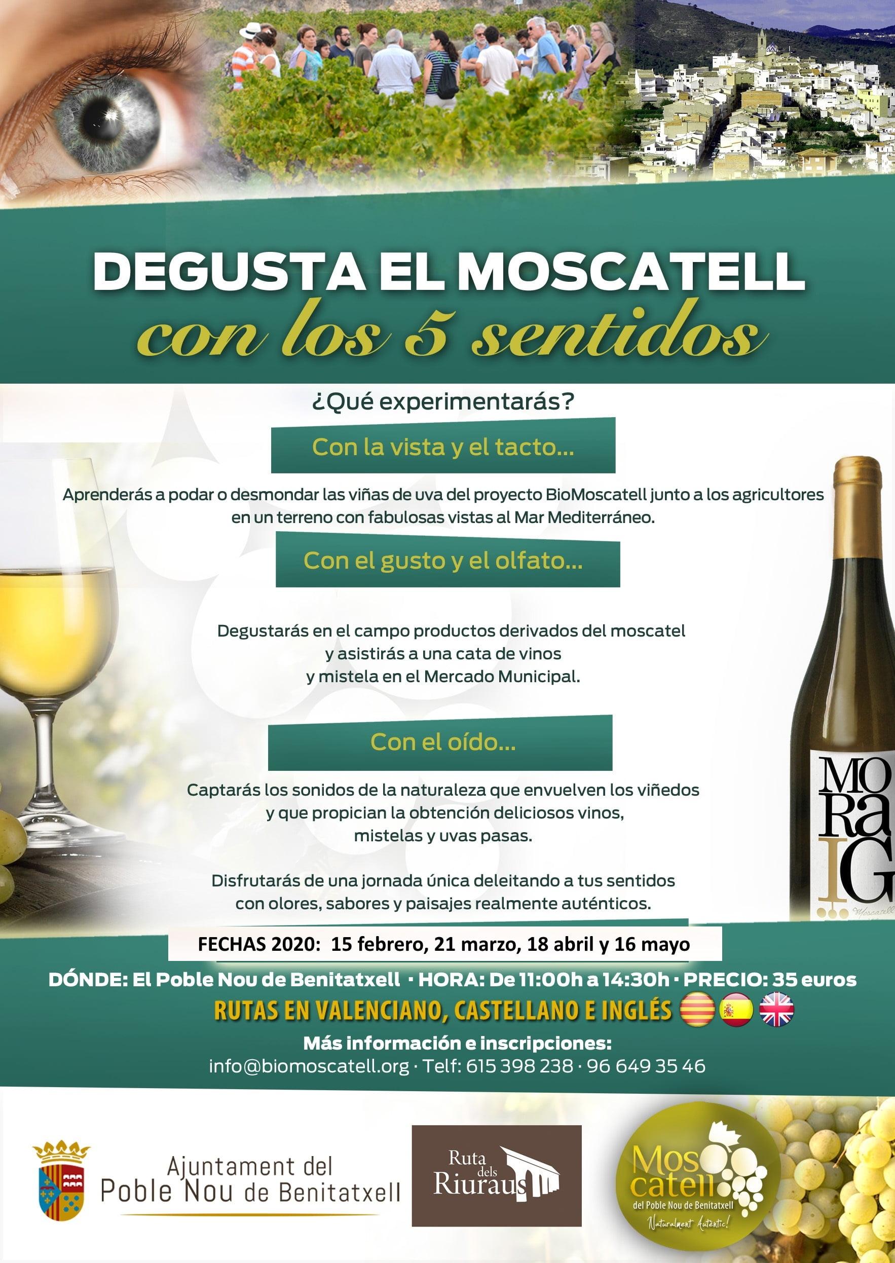 Rutas 'Degusta el Moscatell con los 5 sentidos'