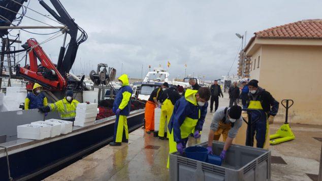 Imagen: Descarga de pesca en el puerto de Vinarós