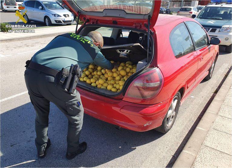 El hombre había robado 140 kilos de cítricos