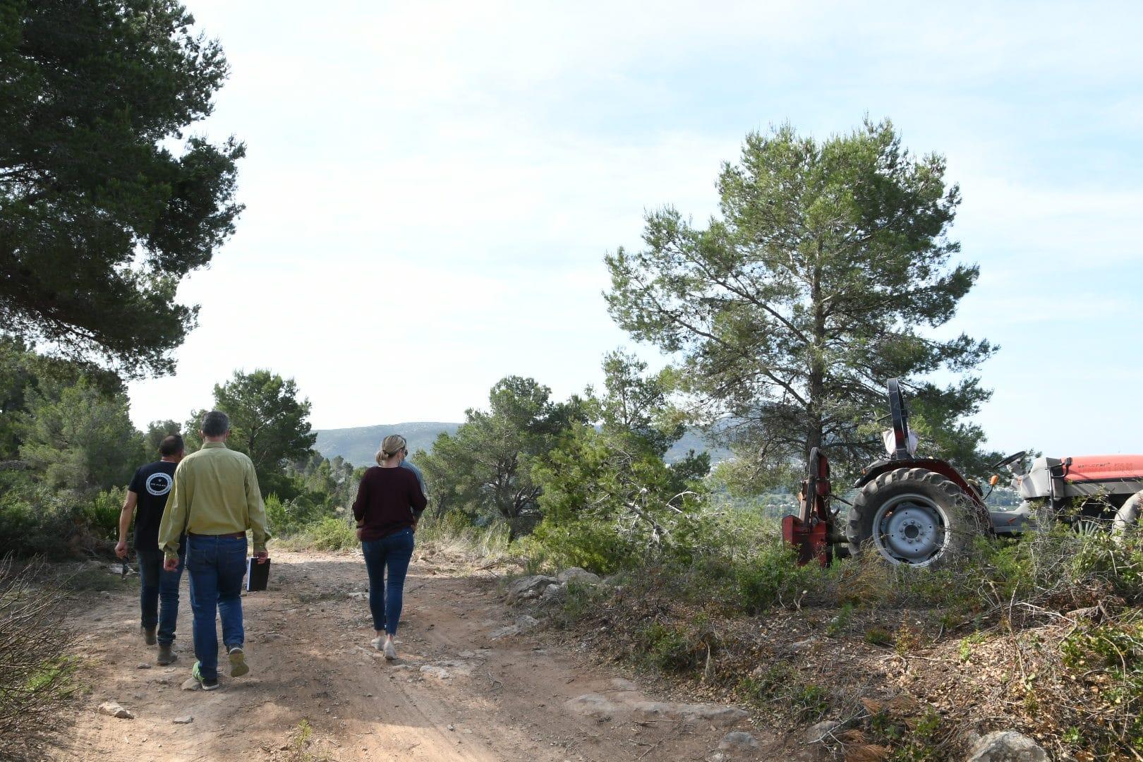 Realización de un cortafuegos en la zona de Capsades- Rebaldí