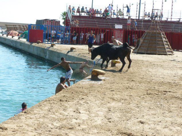 Imagen: En una sesión de Els bous a la mar