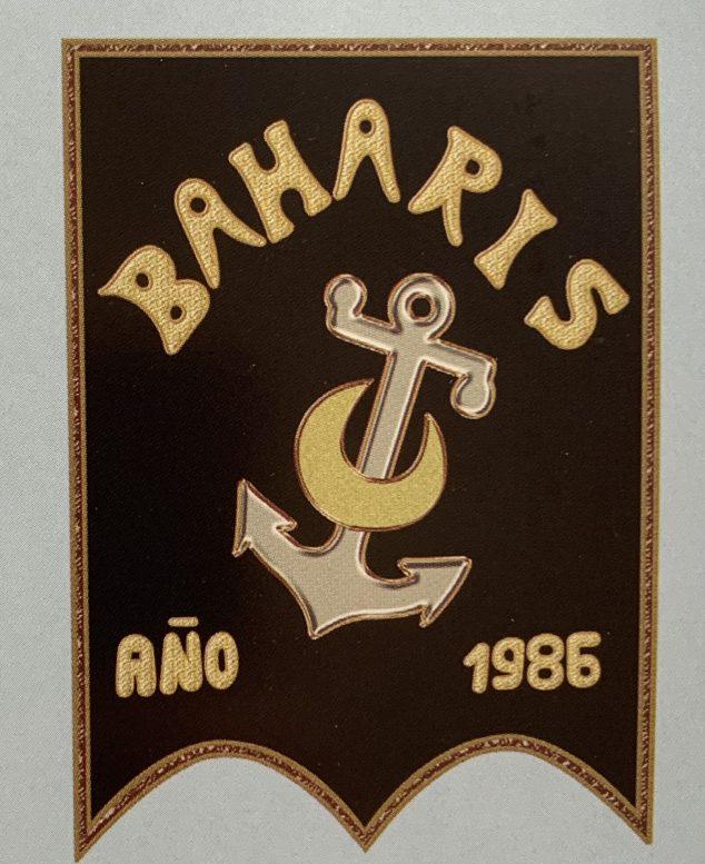 Imagen: Estandarte de la Filà Baharis
