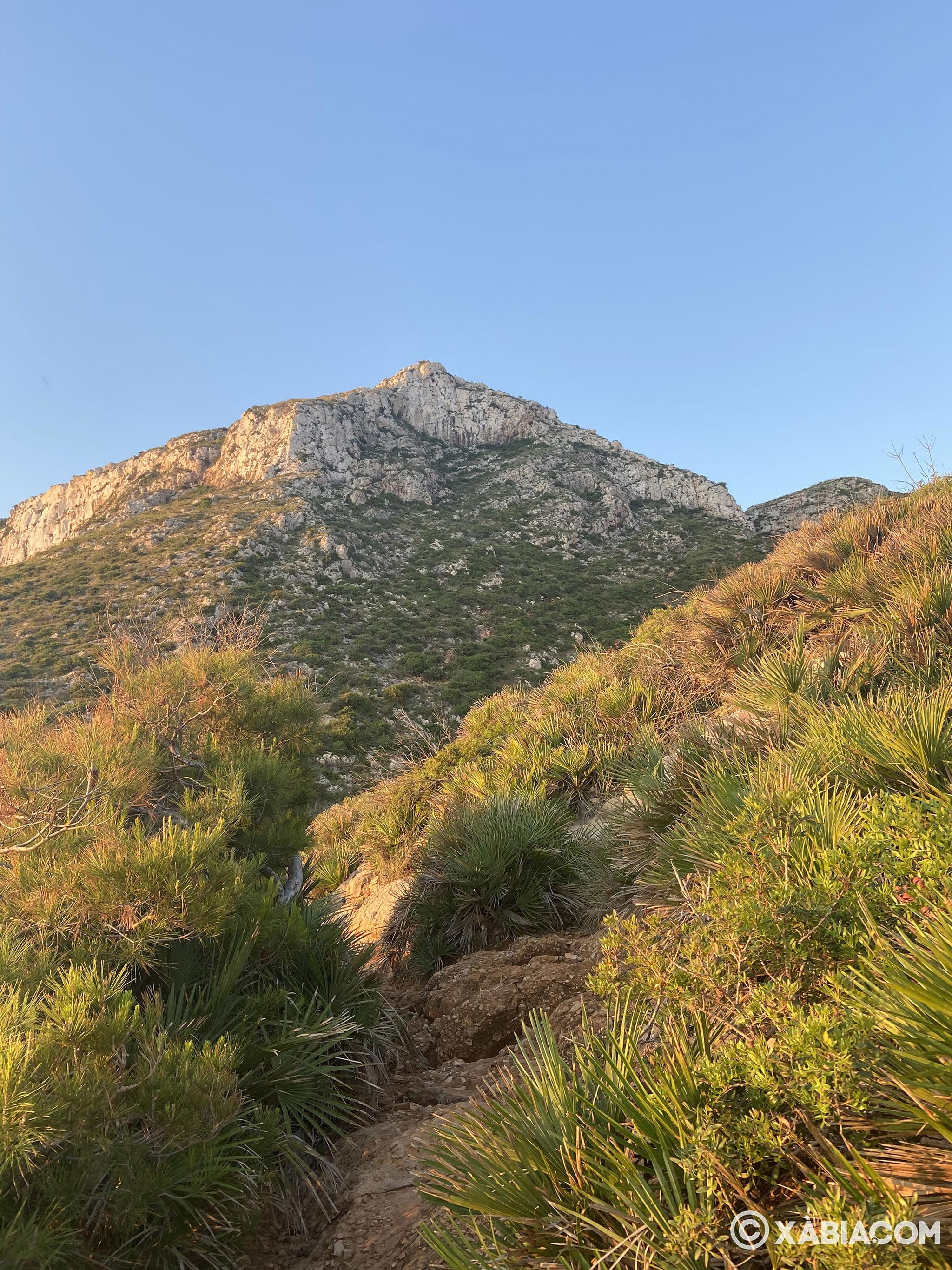 Sendero de acceso a la Cova Tallada desde Dénia