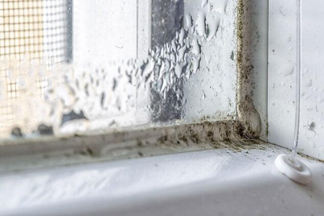 Imagen: Evita la condensación en las ventanas - Hermética