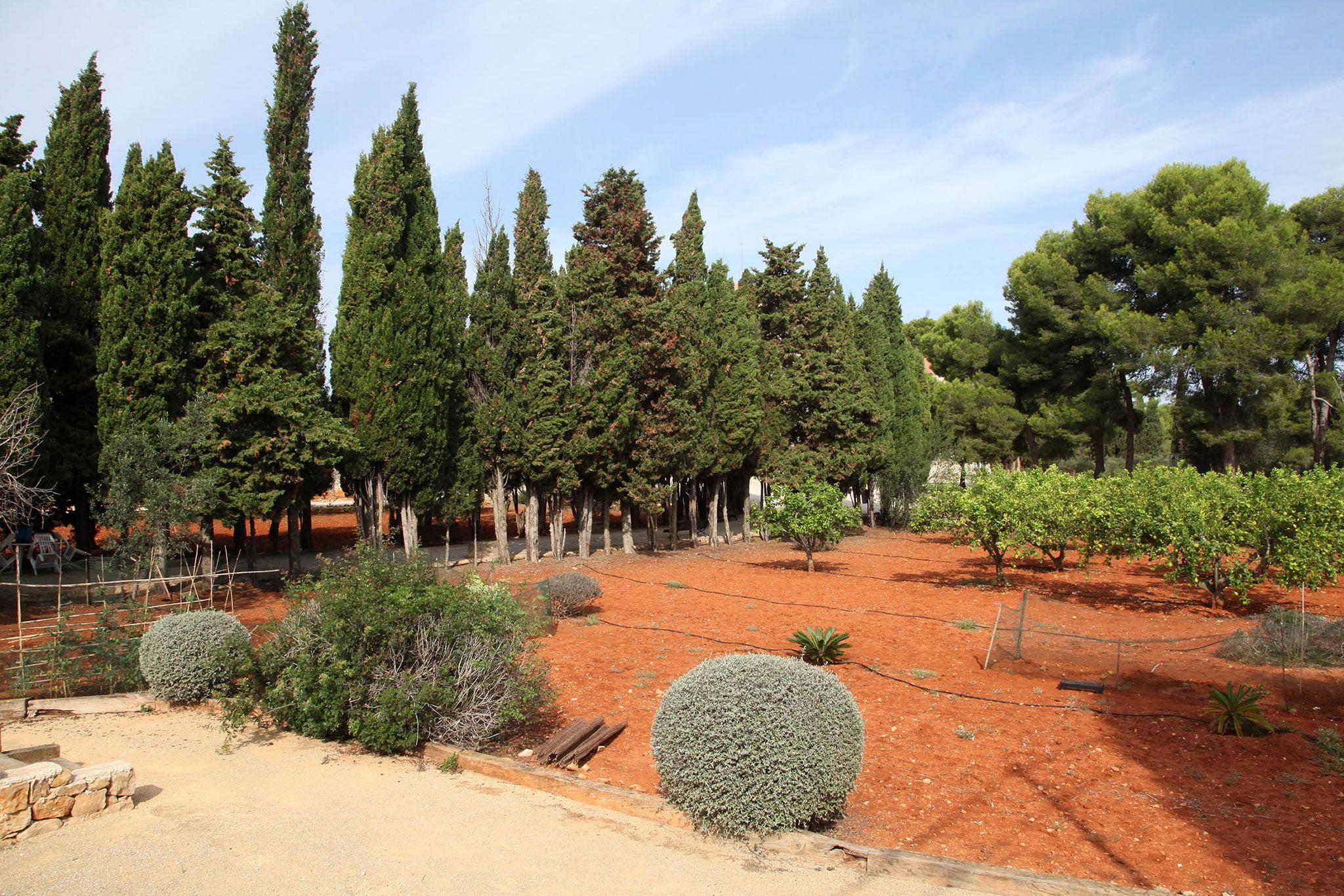 Huerto junto al Monasterio de la Plana de Jávea