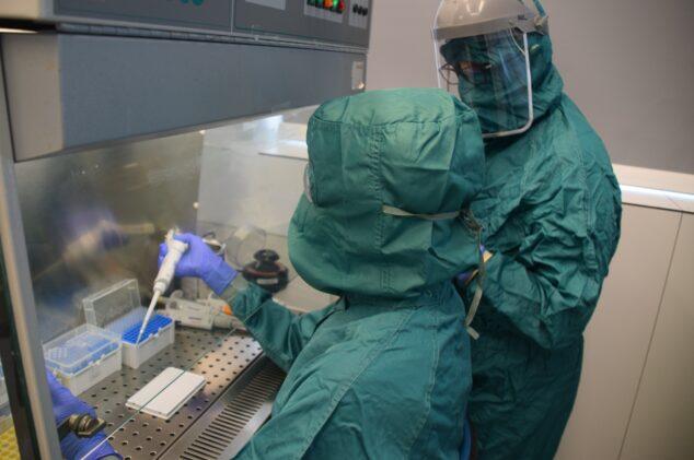 Imagen: Pruebas PCR para detectar casos de COVID-19