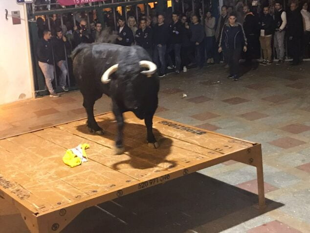 Imagem: Um dos dias de tourada das festas de Sant Sebastià