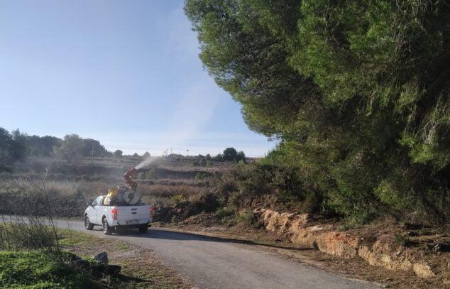 Imagen: Benitatxell trata los pinos ante la procesionaria