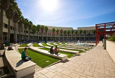 Imagen: Campus de la Universidad de Alicante