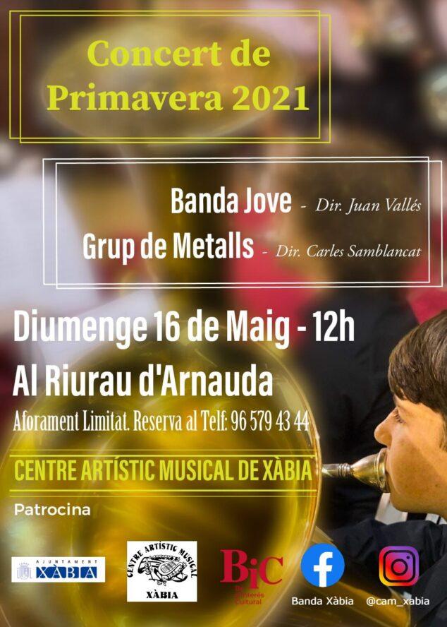 Imagen: Concierto de la Banda Jove y Grup de Metalls
