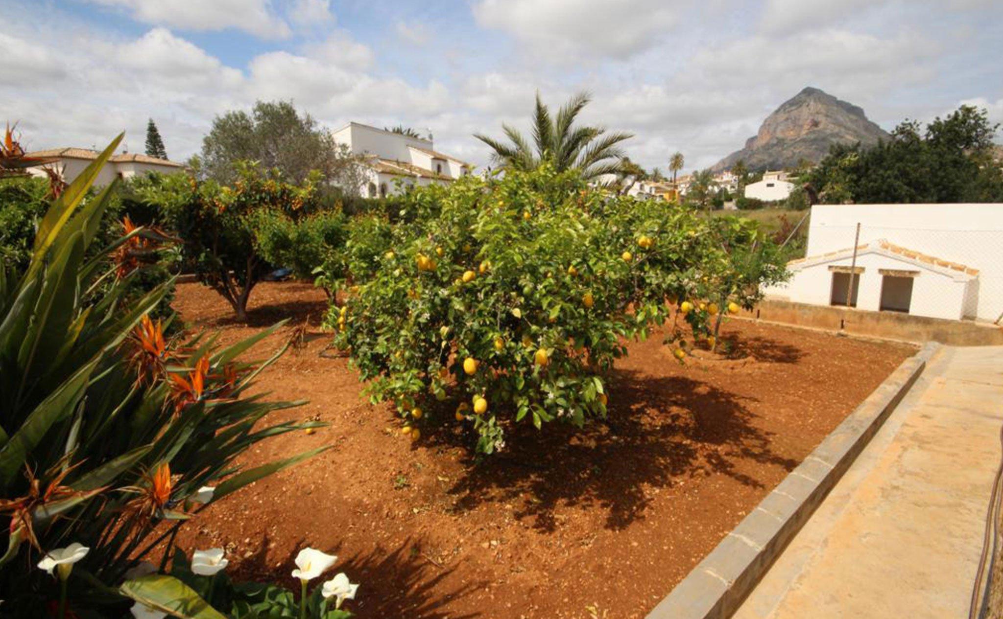 Vistas de una casa mediterránea con apartamento de invitados en Jávea – Atina Inmobiliaria