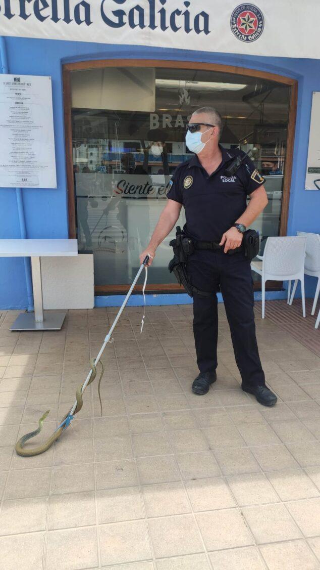 Imagen: Agente de Policía con la serpiente