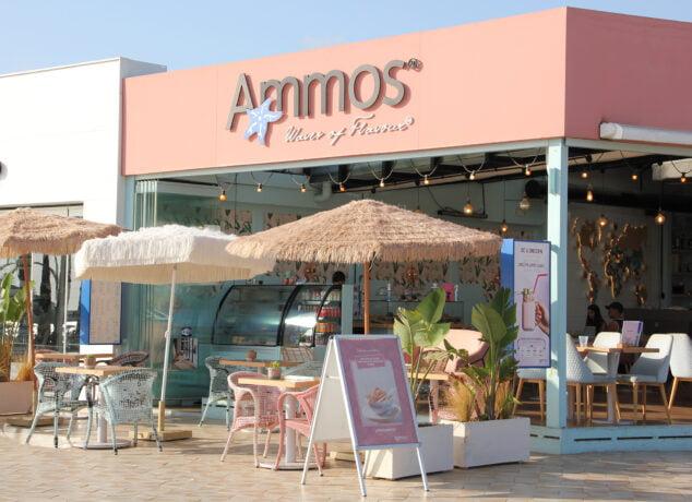 Imagen: Entrada a Restaurante Ammos en la playa del Arenal